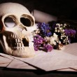 Still life with human skull and retro book on wooden table, closeup — Stock Photo #69481473