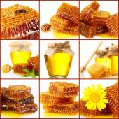 Collage of sweet honey and honeycombs — Stock Photo