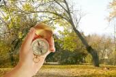 Mano umana con bussola sullo sfondo della natura — Foto Stock