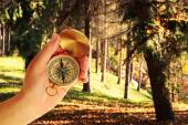 Human hand with compass on nature background — Stock Photo