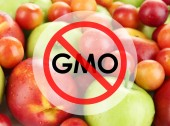 Juicy fruits without gmo — Stock Photo