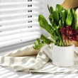 Watering can with variety of green leaves for salad on windowsill — Stock Photo #70602299