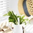 Watering can with variety of green leaves for salad on windowsill — Stock Photo #70602303