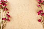 Dried roses on plywood background — Stock Photo