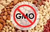 Tasty nuts without gmo — Stock Photo
