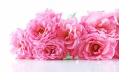 Bouquet of beautiful fresh roses isolated on white — Stock Photo