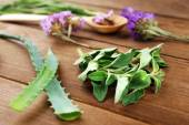 Green herbs and leaves on wooden  table, closeup — Stock Photo