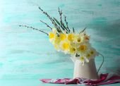 Fresh narcissus flowers with willow sprigs on color wooden background — Stock Photo