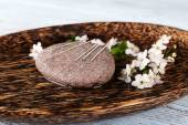 Acupuncture needles on wooden plate with pebble and flowering branch, closeup — Stock Photo