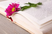 Single flower with open book on wooden table, closeup — Stock Photo