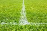 Football field stadium background — Stock Photo