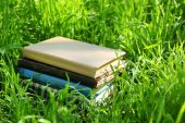Stacked books in grass, outside — Stock Photo