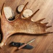 Moose antler with hunting knives — Stock Photo #72752707