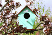 Decorative nesting box on bright background — Stock Photo
