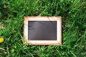 Photo frame over green bush background — Stock Photo