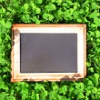 Photo frame over green bush background — Stock Photo #72838359