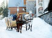 Wagon with horses over snow in wintertime — Stock Photo