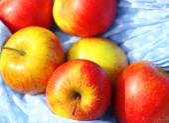 Red apples in hemline — Stock Photo