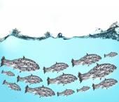 École de poissons sous l'eau — Photo