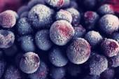 Closeup of frozen currant berries — Stock Photo