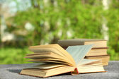 Stack of books outdoors — Stock Photo