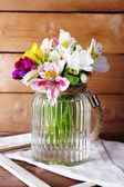 美丽的春天的花朵 — 图库照片