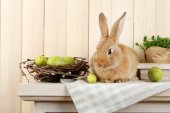 Cute red rabbit with Easter eggs — Stock Photo