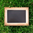 Photo frame over green bush background — Stock Photo #73480419