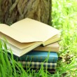Stacked books in grass — Stock Photo #73617057