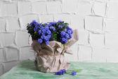 Beautiful bouquet of muscari — Stock Photo