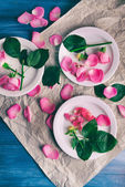 Beautiful pink roses in white plates on parchment, top view — Stock Photo