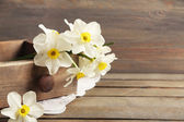 Fresh narcissus in chest on wooden background — Stock Photo