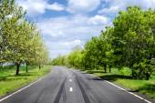 Asphalt road through the green field in spring day — Stock Photo