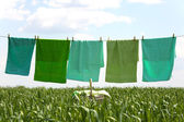 Laundry line with towels — Stock Photo