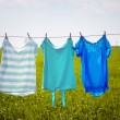 Laundry line with clothes in spring field — Stock Photo #74448155