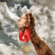 Golden medal in hand on sky background — Stock Photo #74441019