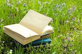 外で草で書籍を積み上げ — ストック写真