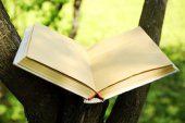 Book on tree branch, close-up — Stock Photo