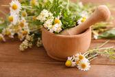 Bitkiler ve çiçekler ile harç, ahşap masa arka plan üzerinde — Stok fotoğraf