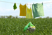 Laundry line with clothes — Stock Photo