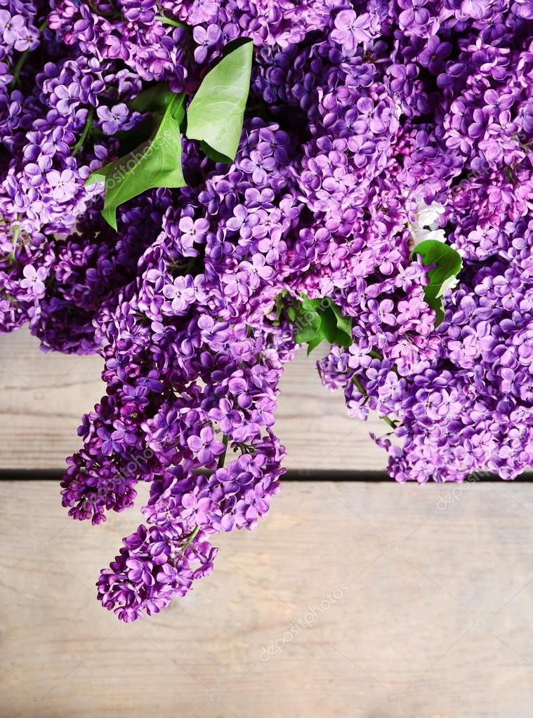 美丽的淡紫色花朵,木制的背景上