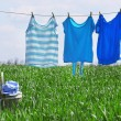 Laundry line with clothes in spring field — Stock Photo #75498099