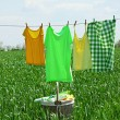 Laundry line with clothes in spring field — Stock Photo #75755137
