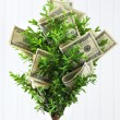 Decorative tree in pot with money on wooden background — Stock Photo #75757251