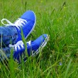 Female feet in gumshoes on green grass — Stock Photo #75759077