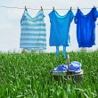 Laundry line with clothes in spring field — Stock Photo #75909159