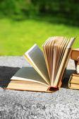 Stoh knih venku, na rozmazané pozadí — Stock fotografie