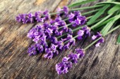 Lavender flowers on table close up — Stock Photo