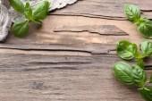 緑の新鮮なバジル — ストック写真