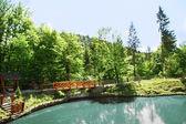 Wooden bridge over lake in park — ストック写真